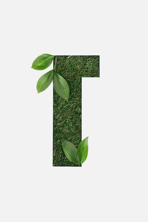 cut out cyrillic letter made of green grass with leaves isolated on white Banque d'images - 119772894