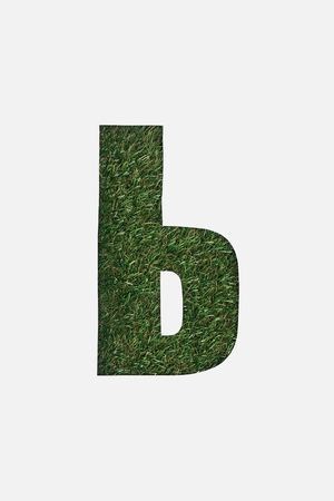 letter from cyrillic alphabet of green grass isolated on white