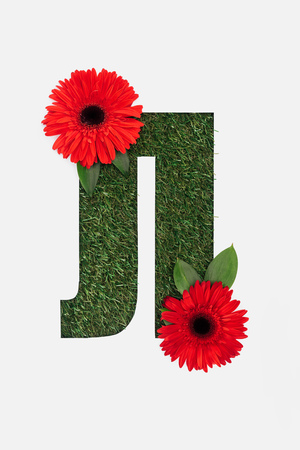 cut out letter from cyrillic alphabet made of natural grass and with red bright gerberas isolated on white