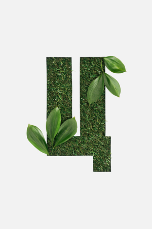 top view of cyrillic letter made of grass with fresh green leaves isolated on white