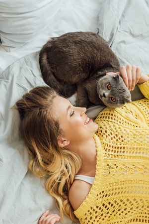 top view of beautiful smiling girl in knitted sweater stroking scottish fold cat while lying in bed at home