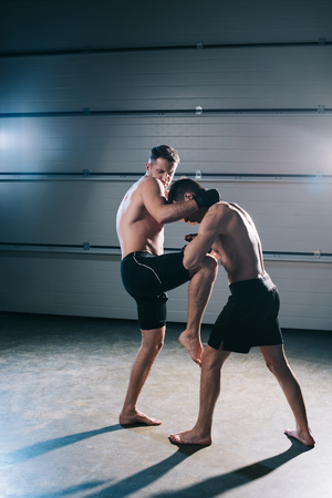 muscular mma fighter kicking sportive opponent with knee
