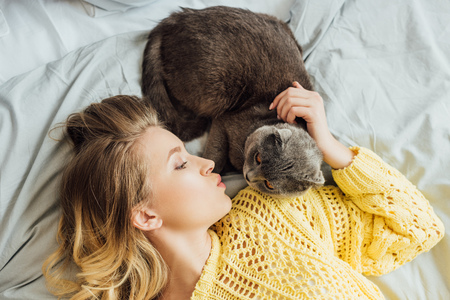top view of beautiful girl pouting lips and stroking scottish fold cat while lying in bed at home