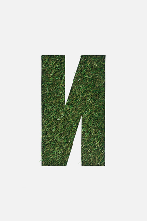 cut out cyrillic letter with fresh grass on background isolated on white