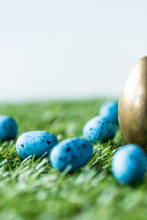 selective focus of blue quail eggs, and golden chicken egg on green grass surface