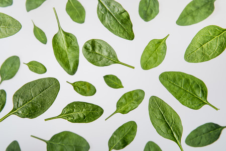fresh green spinach leaves on grey background