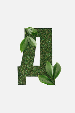 top view of letter from cyrillic alphabet made of natural green grass with leaves isolated on white Stock Photo