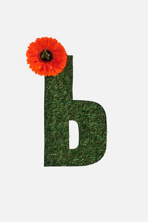 letter from cyrillic alphabet of green grass with bright red gerbera flower isolated on white