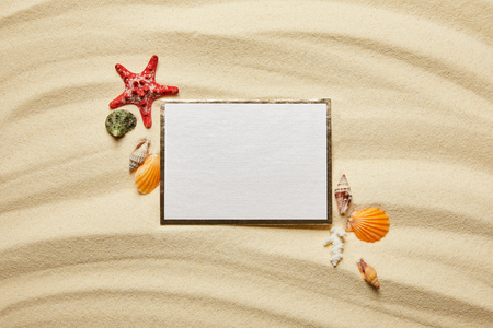 top view of blank placard near seashells, red starfish and white coral on sandy beach