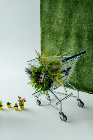 shopping cart with flowers and fern on white with green grass