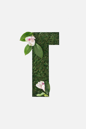 cut out cyrillic letter made of green grass with blooming Alstroemeria flowers isolated on white Banque d'images - 120207749