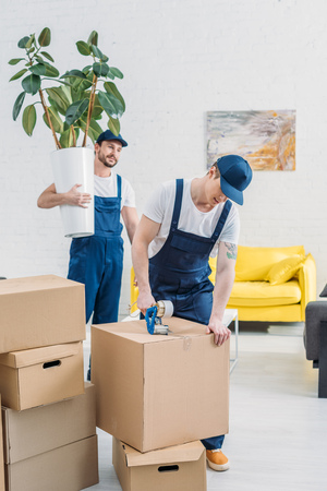 déménageur tenant une plante et regardant un collègue enveloppant une boîte en carton avec du scotch dans l'appartement