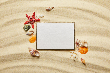top view of blank placard near seashells, starfish and white corals on sandy beach