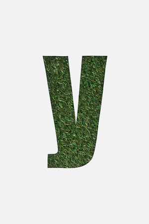 top view of cyrillic letter made of green grass isolated on white Stock Photo