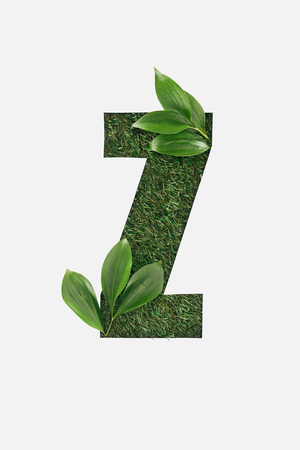 top view of cut out Z letter on green grass background with leaves isolated on white