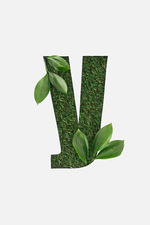 top view of cyrillic letter made of green grass with fresh leaves isolated on white Banque d'images - 120073570