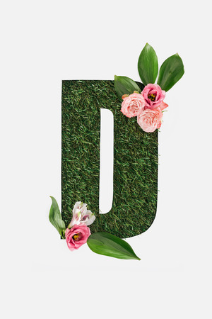 top view of cut out D letter on green grass background with pink roses and  green leaves isolated on white Archivio Fotografico - 120076030