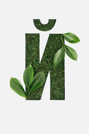 top view of cyrillic letter made of green grass with leaves in corners isolated on white Stock Photo