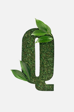 top view of cut out Q letter on green grass background with leaves isolated on white Stock Photo
