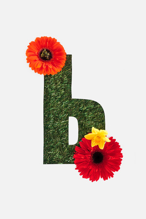 letter from cyrillic alphabet of green grass with bright red gerberas and yellow daffodil isolated on white