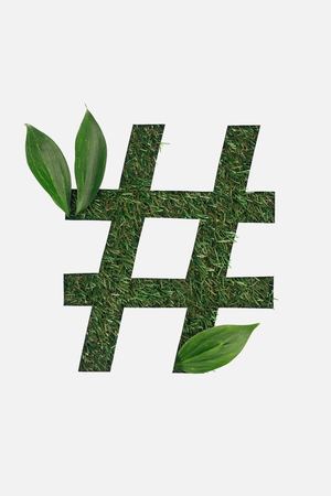 top view of cut out hashtag sign on green grass background with leaves isolated on white Stockfoto