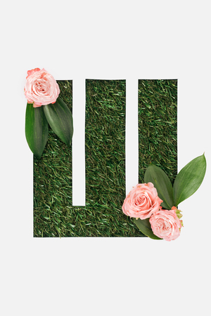 top view of cyrillic letter made of green grass with pink roses isolated on white Banque d'images - 120075975