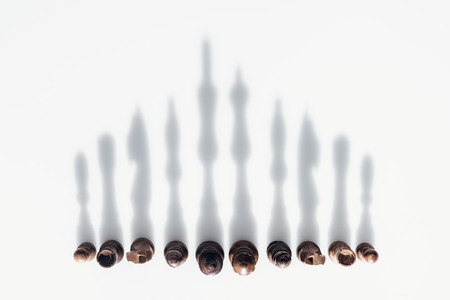 top view of chess figures in row with shadows on white background