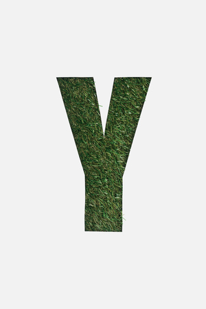 top view of cut out Y letter on green grass background isolated on white