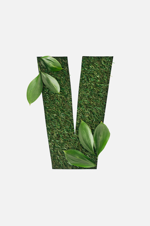 top view of cut out V letter on green grass background with leaves isolated on white