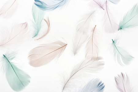 seamless background with soft light beige, green and blue feathers isolated on white