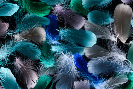 seamless background with multicolored bright plumes isolated on black Stock Photo