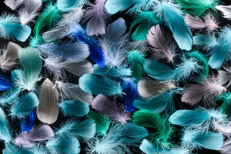seamless background with multicolored light plumes isolated on black