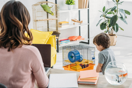 Back view of mother using laptop and cute son standing near pet cage Reklamní fotografie