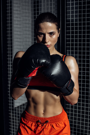 Front view of concentrated boxer in boxing gloves looking at camera