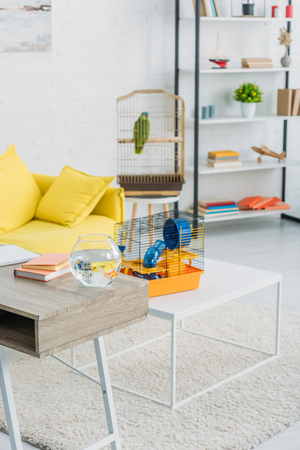 Living room with orange pet cage on white table, rack, and green parrot in bird cage Imagens - 120874993
