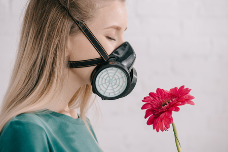 blonde girl with pollen allergy wearing respiratory mask and smelling pink gerbera flower
