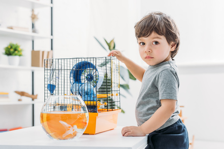 Cute boy standing near table with fish bowl and pet cage and looking at camera