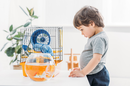 adorable boy standing near table with aquarium and pet cage at home