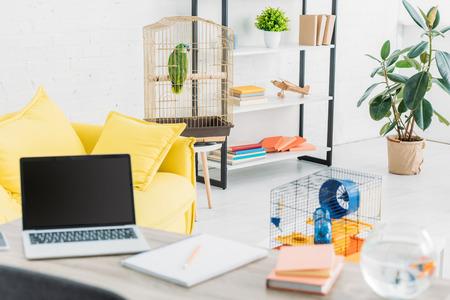 Salon avec ordinateur portable sur table, canapé jaune, perroquet vert en cage à oiseaux et rack Banque d'images