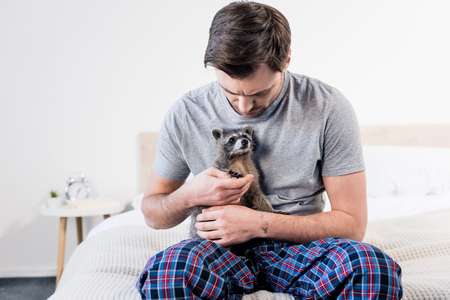 Handsome man in pajamas sitting on bedding and cuddling with funny raccoon Stock fotó