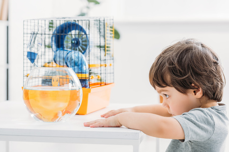adorable boy standing near table with fish bowl and per cage at home