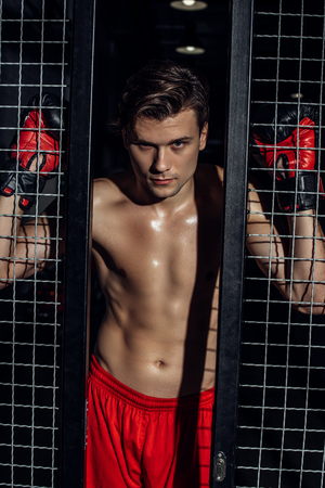 Handsome muscular boxer in boxing gloves standing near wire netting and looking at camera