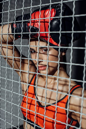 Attractive boxer standing behind wire netting and looking at camera 写真素材