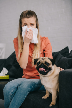 Selective focus of blonde girl allergic to dog sitting near adorable pug