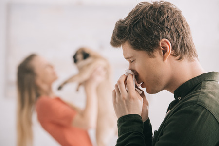 selective focus of man allergic to dog holding tissue and sneezing near girl with pug Standard-Bild - 121416531