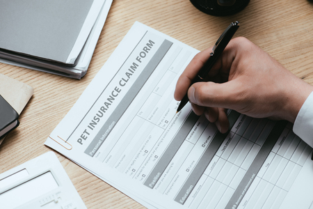 cropped view of man filling in Pet Insurance Claim Form Protection Safety Health Concept
