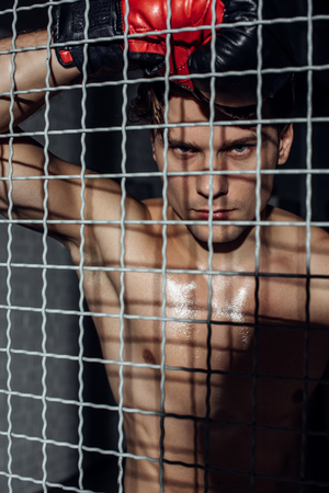 Serious muscular boxer standing behing wire netting and looking at camera 写真素材