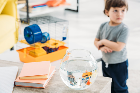 selective focus of boy standing near wooden table with fish bowl and books