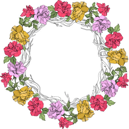Vector Rose floral botanical flower. Wild spring leaf wildflower isolated. Yellow, red and violet engraved ink art. Frame border ornament square on white background. Illustration