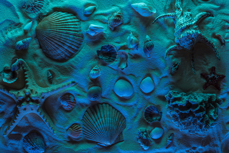 top view of seashells, starfish, sea stones and corals on sand with blue light
